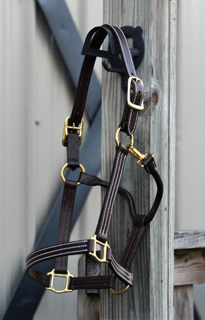 Huntley Equestrian Sedgwick Premium Leather Triple Stitched Halter with Snap - Huntley Equestrian