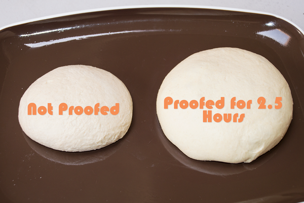 proofing pizza dough pizzacraft