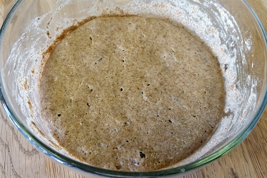 Sourdough Starter after Mixing Ingredients