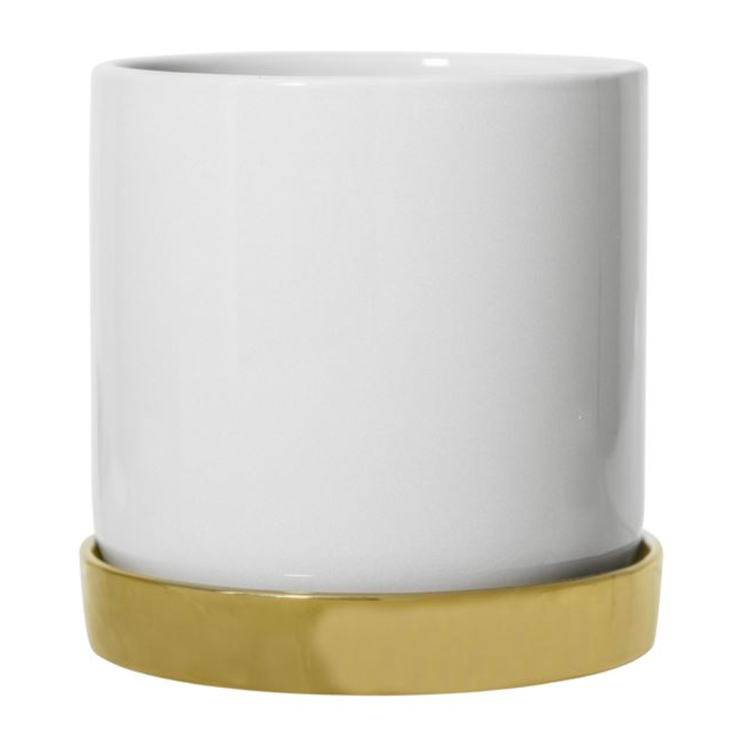 Bright White Planter With Brass Plate