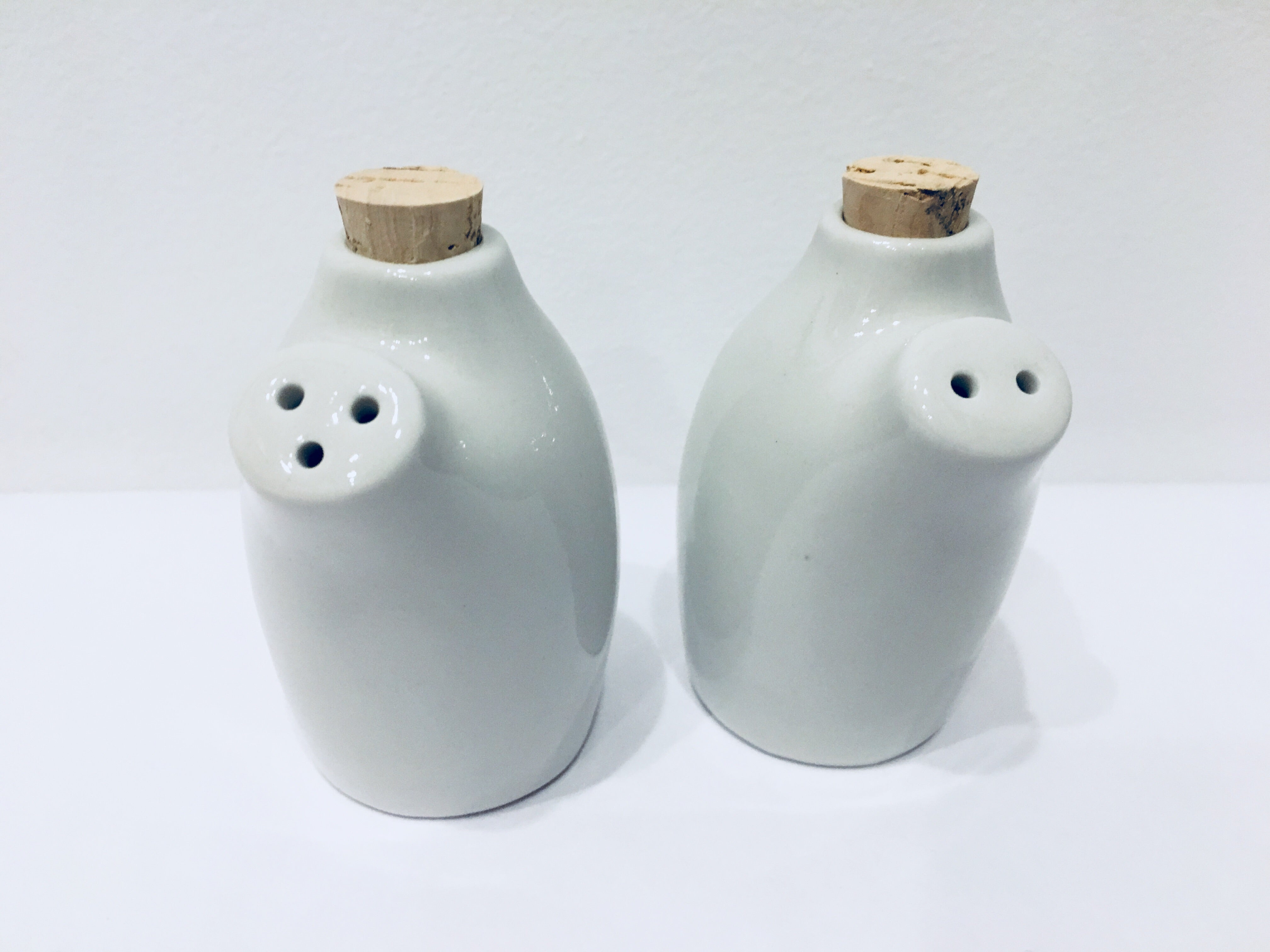 Porcelain salt and pepper shakers