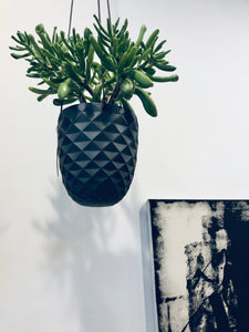 Black Diamond Hanging Planter