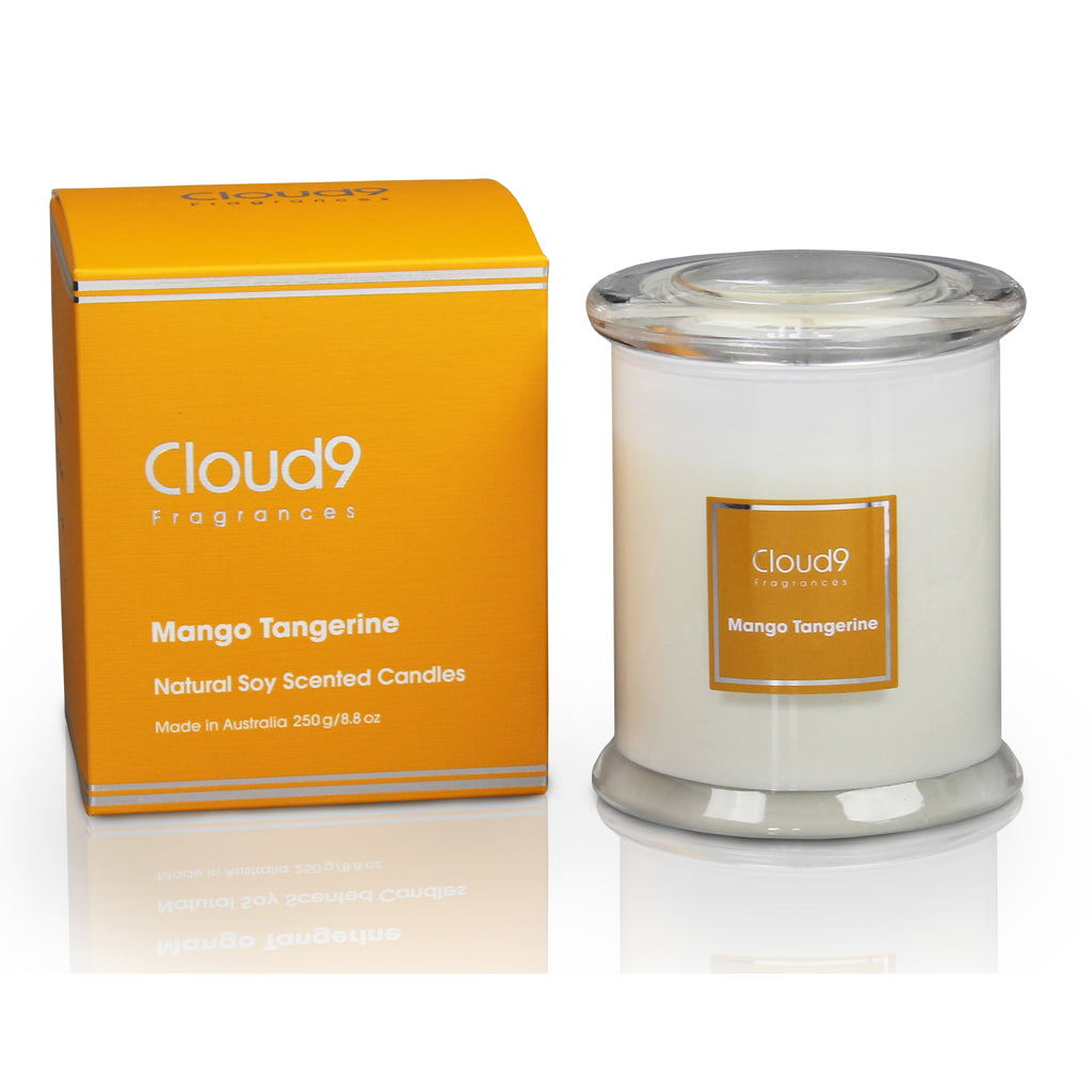 628091b1bf Mango Tangerine Scented Candle – Cloud Nine Fragrances