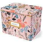 Greeting Card Organizer Tin Box Kit with Dividers, Cards, and Envelopes (Meadow)