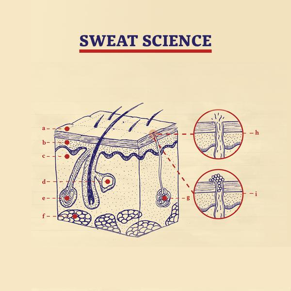 The Science of Sweat: Why Does Sweat Smell?