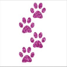 Glitter tattoo stencils - Paw prints - 5pcs