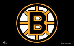 Boston Bruins 3x5ft Flag