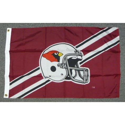Arizona Cardinals (NFL)