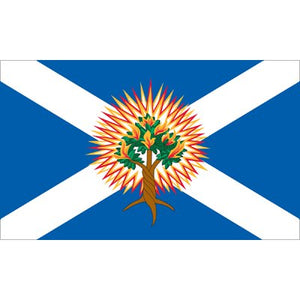 Church Of Scotland Flag - Nylon