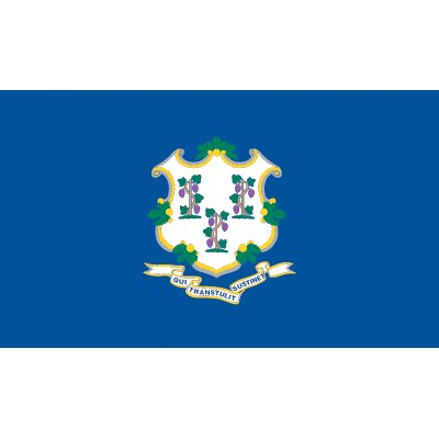 Connecticut Flag - Nylon