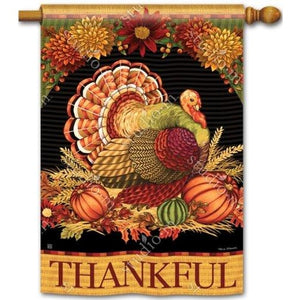 Thankful Turkey - Garden Flag