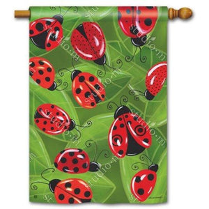 Lucky Ladybugs - House Flag