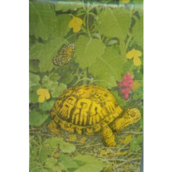 Turtles - House Flag
