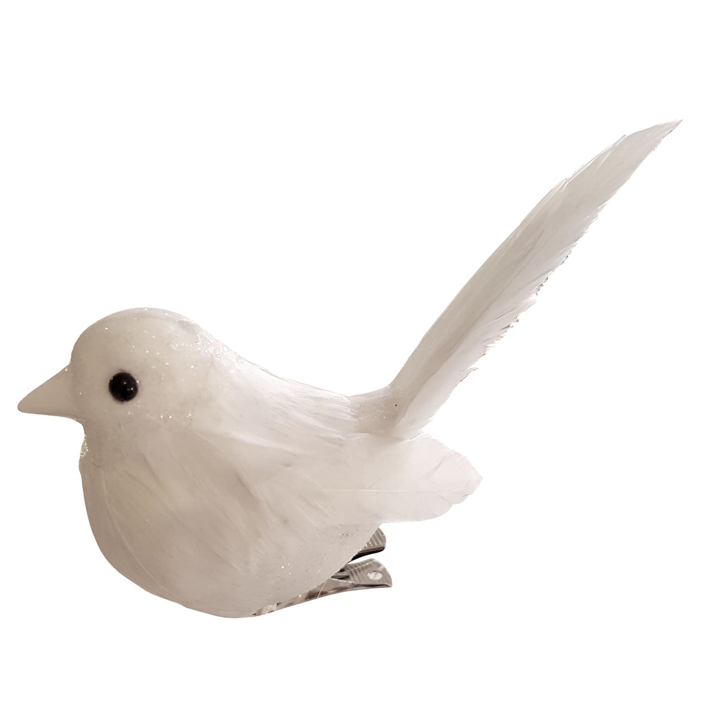 Long Tail White Bird