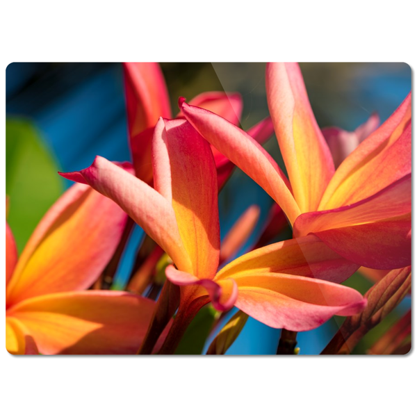 """Plumeria Perfection"" Glass Cutting Board"