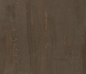 Raw Umber Evans Cold Wax Paint