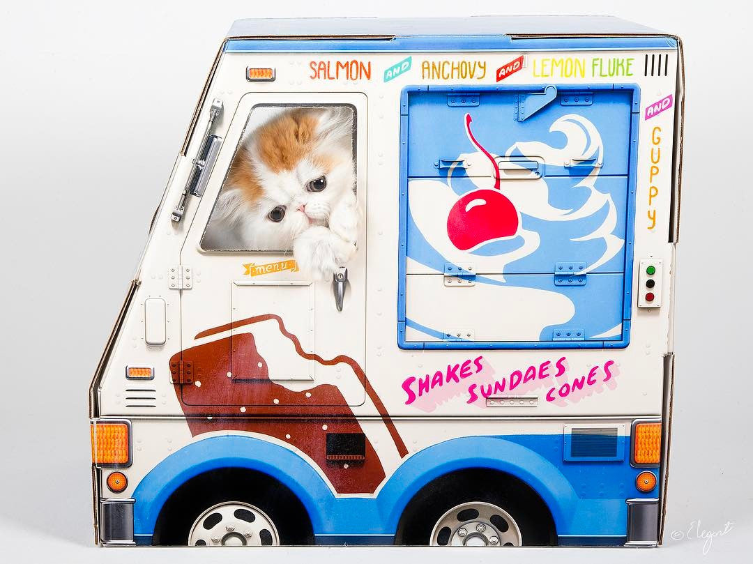 Famous Oto cardboard ice-cream truck playhouse