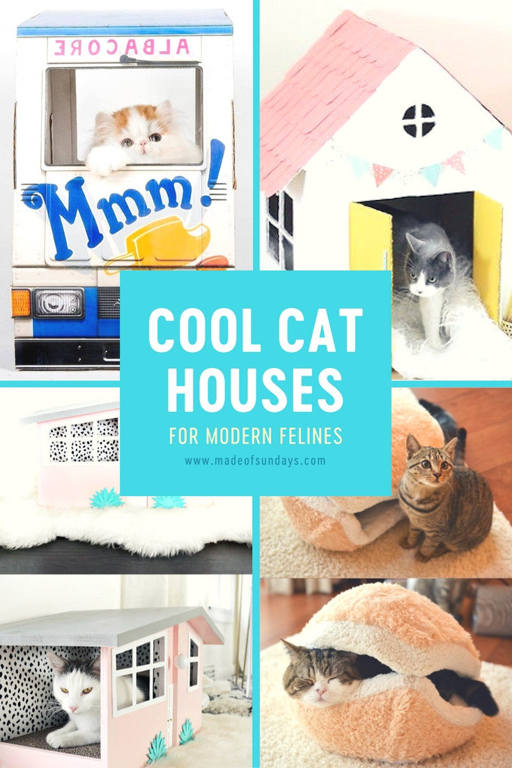 Cool cat houses for modern felines