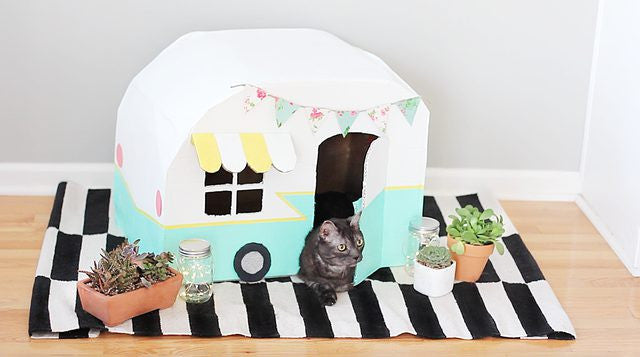 DIY cardboard camper for cats