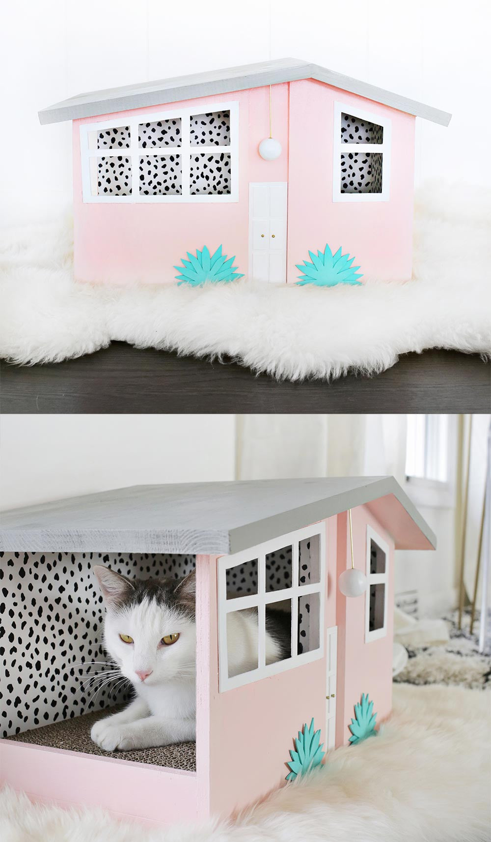 Palm Springs DIY cat house