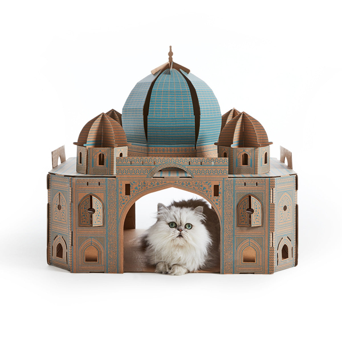Taj Mahal Cat cardboard house
