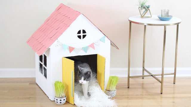 DIY Cat house with old cardboard boxes