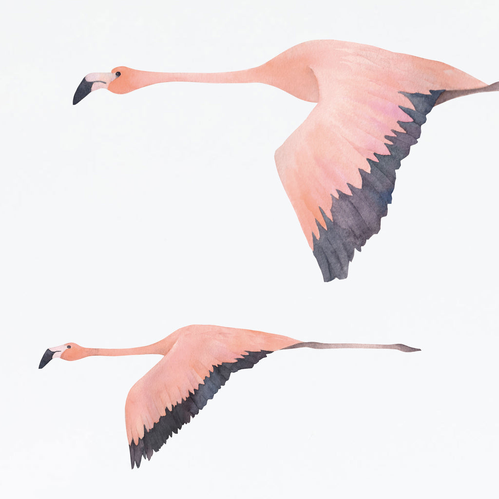 Flamingo Jungle Wall Stickers