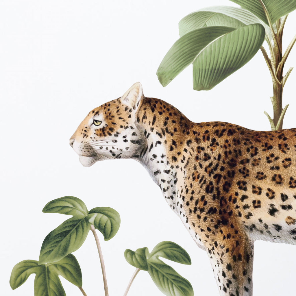 Vintage Leopard Wall Sticker
