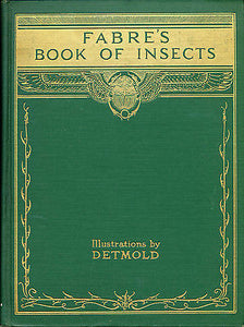 Fabre's Book of Insects Illustrated by E J Detmold 1937 Edition