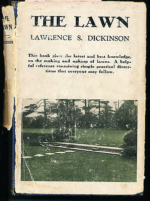 The Lawn by Lawrence Dickinson 1930 Edition Illustrated in Dust Jacket