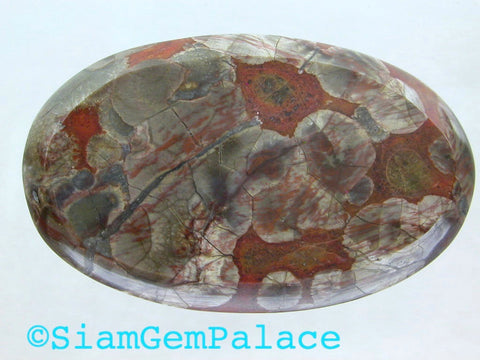 DiScOuNtEd PrIcE Arizona Mushroom Jasper. LARGE. Rare Material.  Can Be Drilled. 45x27mm (MJ113) - Siam Gem Palace - 1