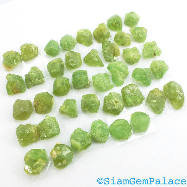 GARNET. Demantoid Garnet. Natural. Rough with Flat Backs. EaSY Setting. MATcHED PAiRs. 5 Pairs. 10 pc. 9.0 cts. 4-5 mm (Ga775A) - Siam Gem Palace - 1
