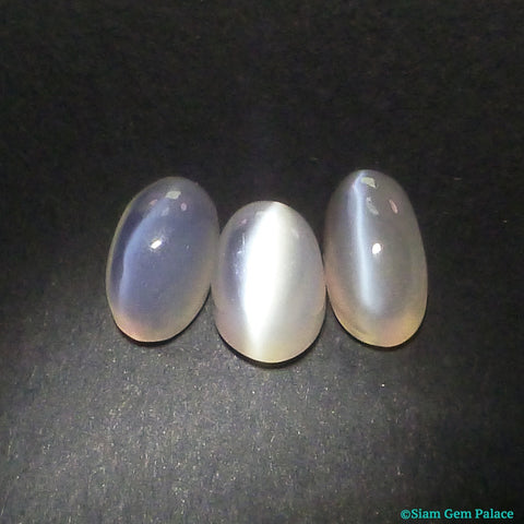 Cat's Eye Moonstone Cabochons. Natural. White. Smooth Tongue Cabs. 3 pc. 8.20 cts. 6x8x6.5 mm (MS168) - Siam Gem Palace - 1