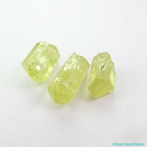 Natural Yellow Apatite Rough Crystals. Super Clean and Very Very Bright. 3 pc. 11.69 cts. +/- 7x11x5 mm  (AP459) - Siam Gem Palace - 1