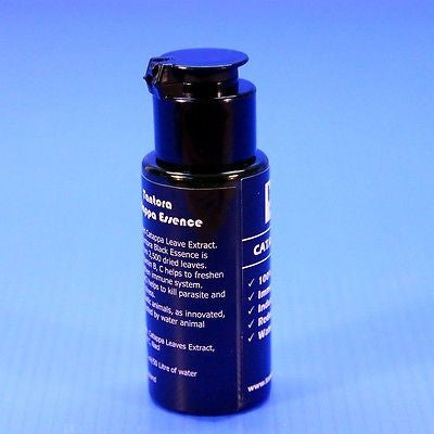 Tantora Catappa Essence 30ml - Indian Almond Leaf Ketapang Bee Shrimp fish CRS