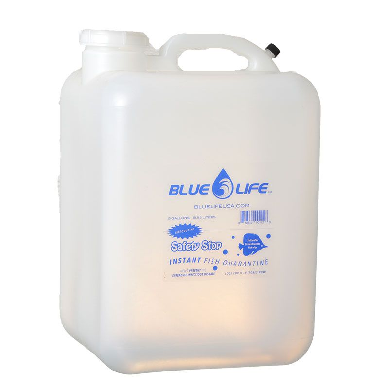 Goaqua88 Blue Life Empty Water Container | 5 Gallons