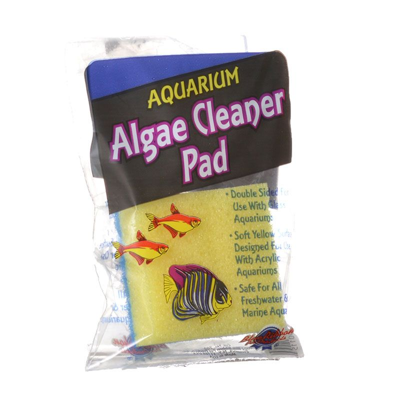 Goaqua88 Blue Ribbon Double Sided Algae Cleaning Pad | Algae Cleaning Pad