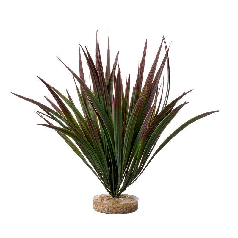 "Goaqua88 Blue Ribbon Amazonian Plant with Gravel Base Plum | 10"" Tall"