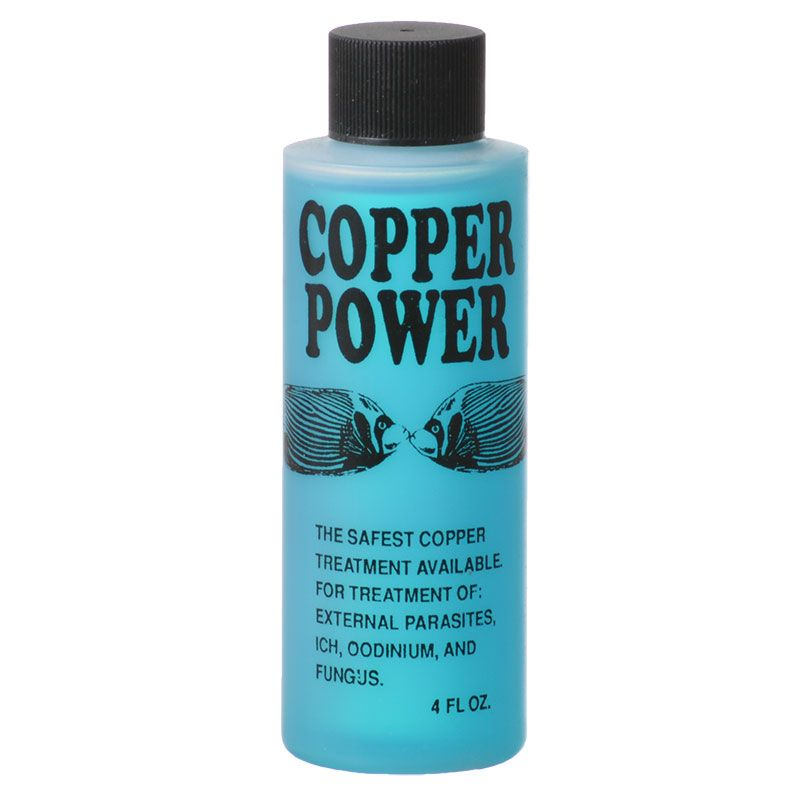 Goaqua88 Copper Power Marine Copper Treatment | 4 oz