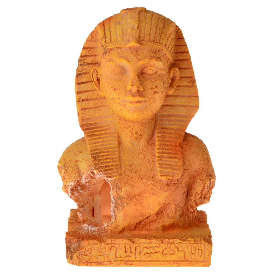Goaqua88 Exotic Environments Terra Cotta King Tut | 1 Count