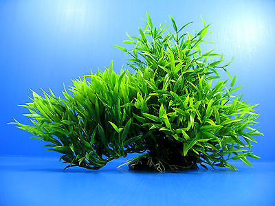 "3D Aquarium PLASTIC PLANTS 13""L Ornament fish Decor pet"