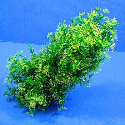 Shapeable Aquarium PLASTIC PLANTS Ornament Decor #010