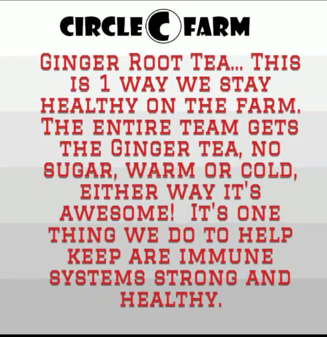 Circle C Farm Organic Ginger Root Tea Recipe
