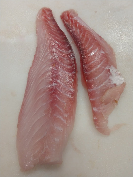 Gag Grouper Fish Fillets, Wild Caught, Raw, Fresh Frozen - Circle C Farm