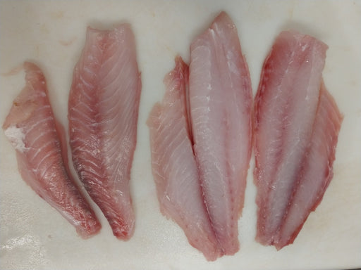Red Snapper Fish Fillets, Wild Caught, Raw, Fresh Frozen - Circle C Farm