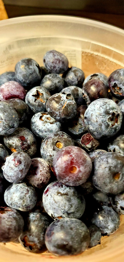 Fresh Frozen Blueberries, UNWASHED - Circle C Farm