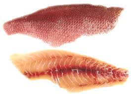 Mutton Snapper Fish Fillets, Wild Caught, Raw, Fresh Frozen - Circle C Farm