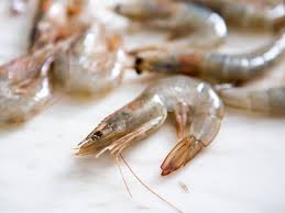 Florida Pink Shrimp, Wild Caught, Raw, Head On, Frozen, Size U12 /LB - Circle C Farm