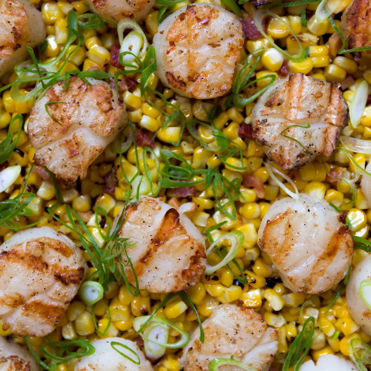 Diver Scallops With Charred Sweet Corn, Bacon And Scallions