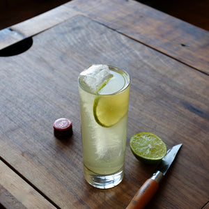 Whiskey Ginger Tonic